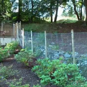 Deer fence with rabbit netting