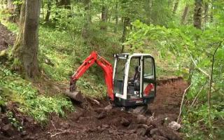 Woodland digging through rock