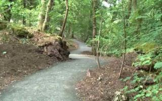 Woodland path after completion