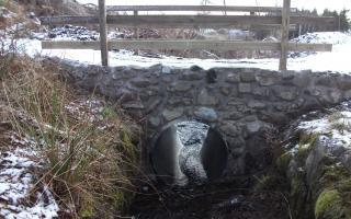 Bridge and drain